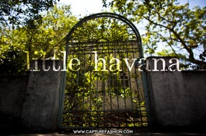 little havanna by amanda del duca-1-1